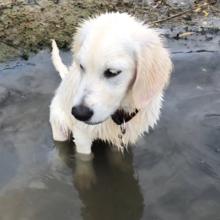 Eerste-keer-in-het-water