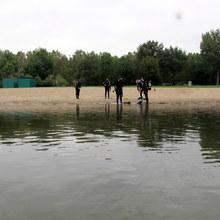 Duikers_aan_de_waterkant